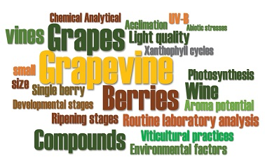 Analytical methods to measure grape metabolites