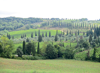 The Tuscan hillsides of Italy