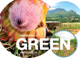 Pioneers of GREEN innovation