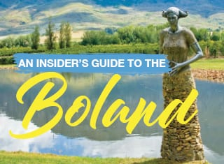 An insider's guide to the Boland