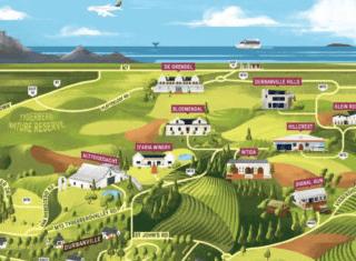 A sensory overview of Durbanville's Sauvignon Blanc