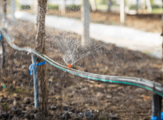Irrigating with the future in mind