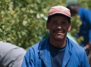 The Western Cape has created 95 000 new jobs in the past year