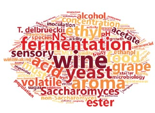 Non-Saccharomyces yeasts and malolactic fermentation