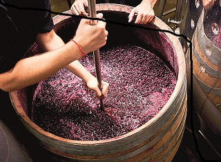 New tools to help overcome stuck fermentations in wine