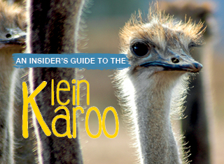 An insider's guide to the KLEIN KAROO