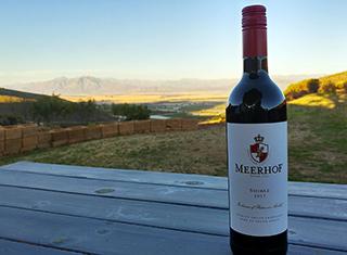Meerhof looks ahead