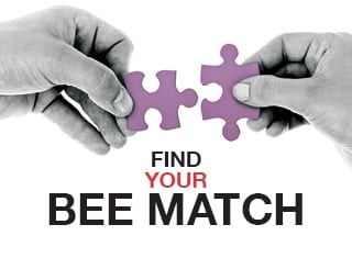 Find your bee match
