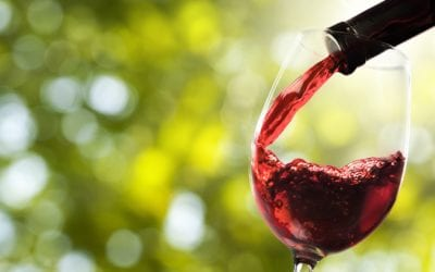 State of the SA Wine Industry 2018/2019
