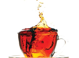 Rooibos hits the big time