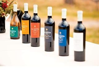 Origin Wine: A Tale of Two Terroirs