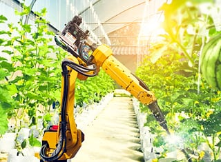Agri Megatrends: Tech remains the biggest disruptor in 2019