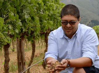 Wielding the magic wand: Q&A with Timothy Witbooi, Lourensford Estate