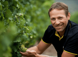 Q&A with Hannes Nel, cellarmaster at Lourensford Estate: progress report on #harvest2019