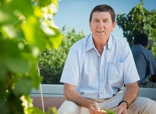 SA Harvest report 2019