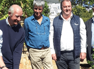 Witte Wijnappel back in Company's Garden