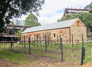 Management and re-use of treated winery wastewater (Part 3): Adelaide, Australia