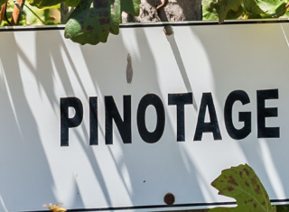 Absa Top 10 Pinotage: Mutual value for both producer and consumer