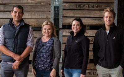 """Diemersdal releases fourth vintage of unique """"frozen"""" Sauvignon Blanc"""