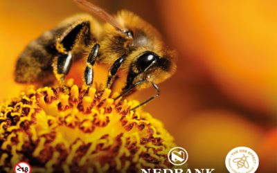 Nedbank & Boland Cellar gives Boland Trees for Bees initiative new buzz