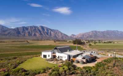 Nuy Winery releases Mastery Sauvignon Blanc 2020 and Legacy Calcareo 2018