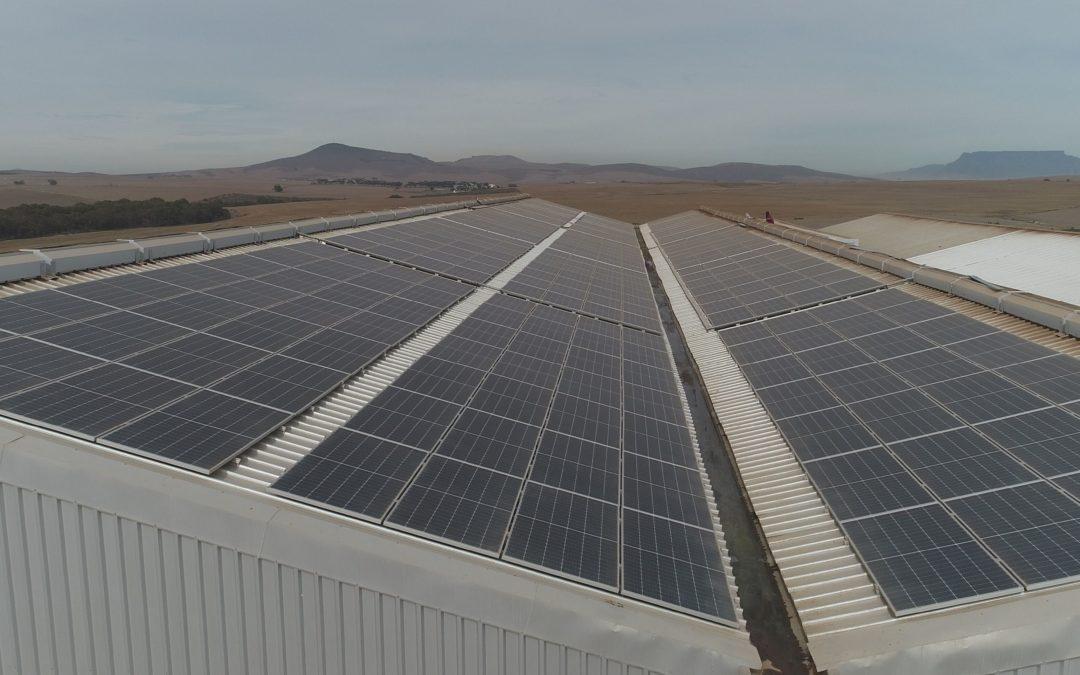 AtlanticFertilisers now generates its own electricity
