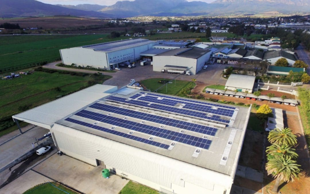 DGB now SA drinks industry leader in workplace and environment accreditation